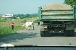 na ukraińskich drogach
