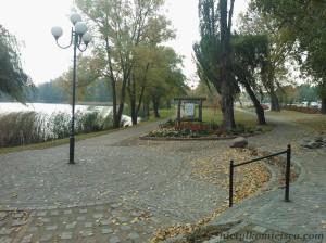 park nad jeziorem